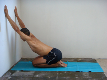 Arm stretches: Spiderman arm stretch for the front of the shoulders and chest. Kneeling in front of a wall, hands reach up the wall as high as possible. Chest is leaned forwards towards the wall. Spine is actively bent backwards. Shoulders are also active. Gaze is forwards, towards the wall. Neil Keleher. Sensational Yoga Poses.