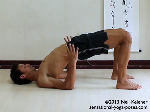 yoga poses for strengthening the back of the body, bridge