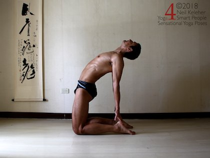 Back bending yoga poses: Camel pose. Hands on feet with elbows straight. Hips pushed forwards over knees. Spine actively bent backwards using spinal erectors. Neil Keleher. Sensational Yoga poses.