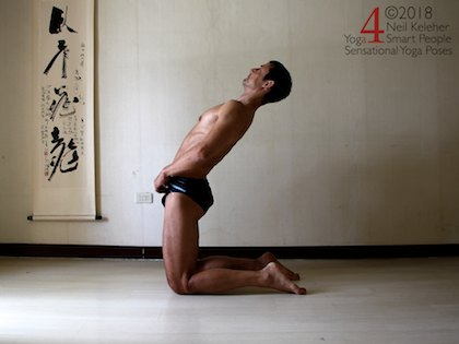 Backbending yoga poses: Camel pose. Kneeling with hips lifted, hips are positioned over the knees. Torso is leaning backwards with hands placed in front of the hips. Head is inline with the torso with gaze directed forwards and upwards.