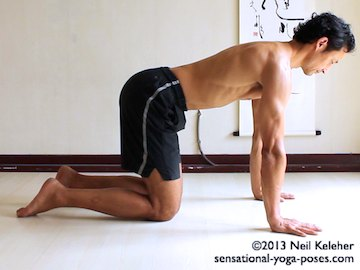 cat pose with protraction, Neil Keleher, Sensational Yoga Poses.