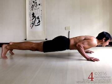 Prone Yoga Poses, Chaturanga dandasana with wrists under shoulders, Neil Keleher, Sensational Yoga Poses