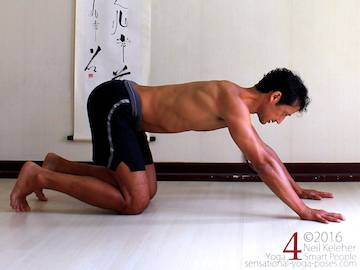 Prone Yoga Poses, on all fours pushing hips back, Neil Keleher, Sensational Yoga Poses