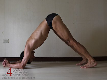 dolphin pose with hands clasped Neil Keleher, Sensational Yoga Poses.