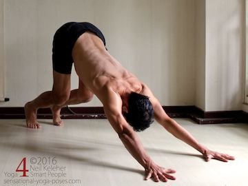 down dog with knees bent, Neil Keleher, Sensational Yoga Poses.