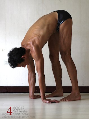 Arm strengthening standing forward bend:  pushing into hands with fingers outwards. Neil Keleher. Sensational Yoga Poses.