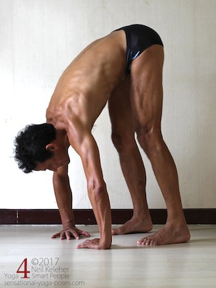 Arm strengthening standing forward bend:  pushing into hands with fingers inwards. Neil Keleher. Sensational Yoga Poses.