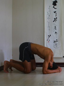 inverted yoga pose, headstand using wall