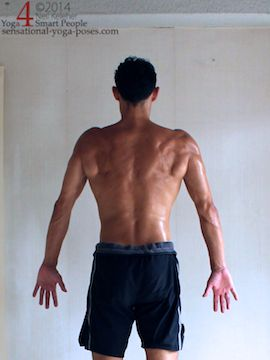 shoulder blades protracted, rear view, Neil Keleher, Sensational Yoga Poses