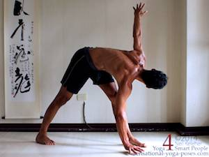 In twisting triangle it may be possible to experience hip pain near the front of the front leg hip. Neil Keleher. Sensational Yoga Poses.