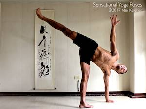 Half moon is a balance pose with weight on one leg and the same side hand touching the floor.  Neil Keleher, Sensational Yoga Poses.