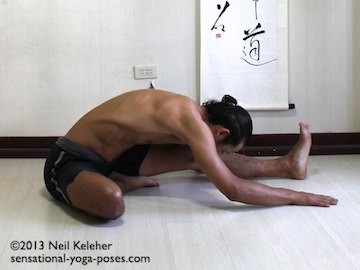 janu sirsasana a with head to shin and hand on the floor either side of the straight leg. Neil Keleher. Sensational Yoa Poses.