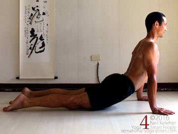 Prone Yoga Poses, down dog pose,  Neil Keleher, Sensational Yoga Poses