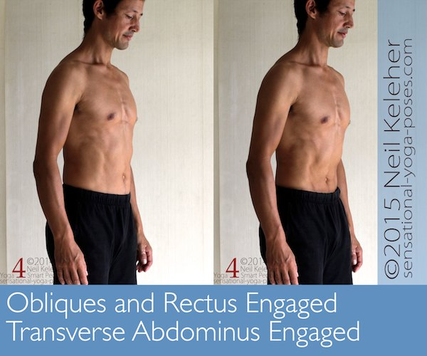 In first picture, obliques are engaged so that abdominal wall is pulled flush with rim of ribcage and pelvis. In second picture, transverse abdominis is engaged so that belly is pulled past the border of the ribcage and pelvis. Neil Keleher, Sensational Yoga Poses.