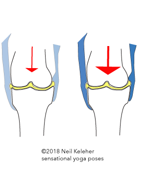 The arrow represents pressure acting on a synovial articular joint. The blue represents muscle activated tension in ligaments and tendons acting on the joint capsule. As pressure is increased (bigger arrow on right) ligament and tendon tension increases so that the joint capsule resists synovial fluid being pressed out from between the bones. Neil Keleher. Sensational Yoga Poses.