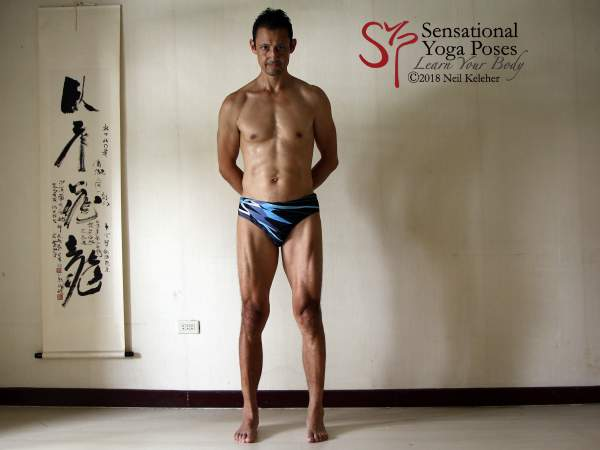 Mindful muscle control, quadriceps activated while standing.. Neil Keleher. Sensational Yoga Poses.