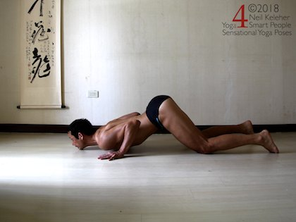 Back bending yoga poses: Pupply dog with elbows bent. Kneeling with hips lifted and over the knees. Torso is bent forwards at the hips with spine bent backwards so that chest can rest on the floor. Head is tilted back so that chin is on the floor. Elbows are bent with hands partially supporting the weight of the upper body. Neil Keleher. Sensational Yoga Poses.