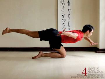 Kneeling Yoga poses: flying shin balance. Body is balanced on one shin. Torso is bent forwards at the hips with free leg reaching back. Arms are used to help maintain balance. Gaze is forwards. Neil Keleher. Sensational Yoga Poses.