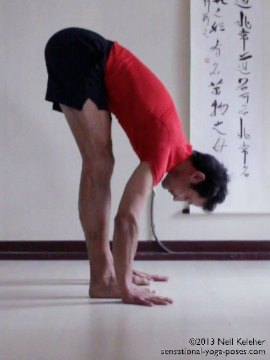 , standing forward bend from side. In standing forward bend yoga pose the legs are straight with both feet flat on the floor. Feet are parallel with toes pointing straight ahead. In this picture feet are hip width apart. Torso is tilted forwards at the pelvis and palms are flat on the floor with elbows straight. Spine is long with a slight forward curve and lower back and ribcage.