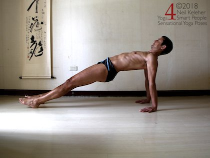 Arm Supported Yoga Poses: Reverse plank with hips lifted using glutes, spine bent backwards using spinal erectors. Shoulders active also. Neil Keleher. Sensational Yoga Poses.