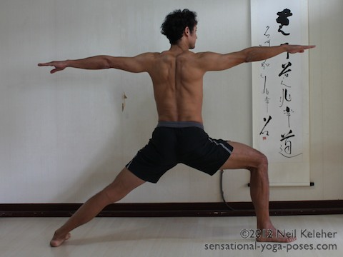 warrior 2 yoga pose, back view, shoulder blades retracted