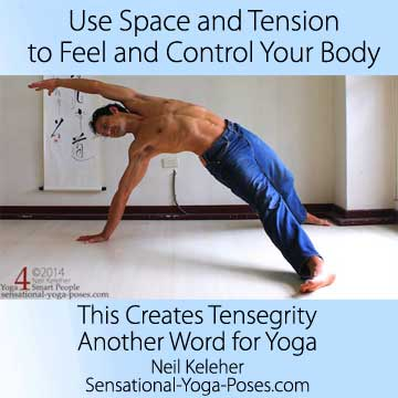 Use space and tension to feel and control your body. This creates tensegrity, another word for yoga.