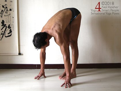 Standing forward bend yoga pose with hands on floor. Neil Keleher, Sensational Yoga Poses