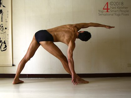 Triangle yoga pose with hand on floor. Neil Keleher, Sensational Yoga Poses.