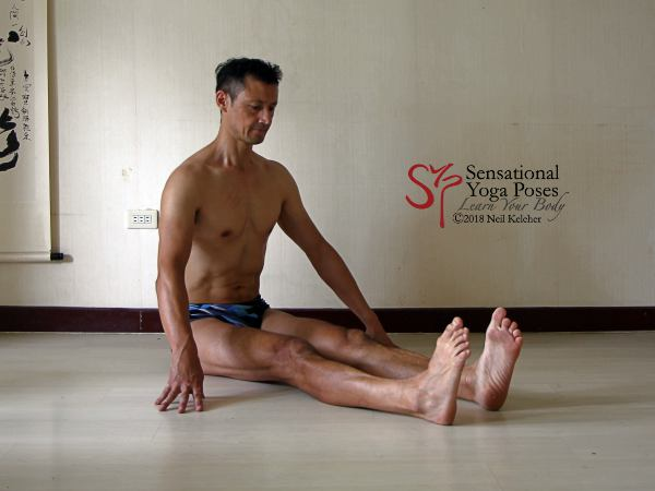 Staff pose with feet turned inwards. Tibialis anterior can work with tibialis posterior to turn the soles of the feet towards each other. Neil Keleher. Sensational Yoga Poses.