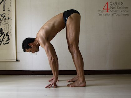 standing forward bend with weight forwards so that hands press into the floor. Neil Keleher. Sensational Yoga Poses.