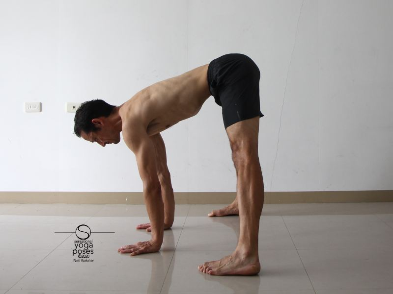 hamstring stretching yoga poses: Standing wide leg forward bend with hands on floor. Neil Keleher, Sensational Yoga Poses.
