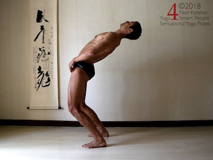 Back bending yoga poses: Standing back bend with spine bent backwards and pelvis pushed forwards so that hips are bent back. Spinal erectors, gluteus maximus and hamstrings active.