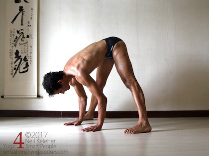 Wide leg standing forward bend, bending forwards at the hips with hands on the floor.  Neil Keleher. Sensational Yoga Poses.