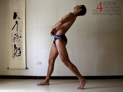 Back bending yoga poses: Lunge with both legs straight with back leg hip bent backwards and spine bent backwards also using spinal erectors.