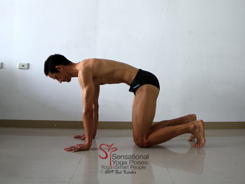 Transverse abdominis exercise on all fours, pull belly in so that the pubic bone and sternum move towards each other. Neil Keleher, Sensational Yoga Poses.